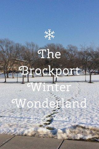 The Brockport Winter Wonderland By: Richie Mollura