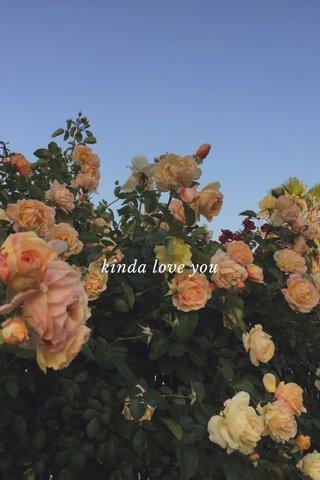 kinda love you