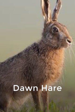 Dawn Hare