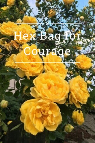 Hex Bag for Courage