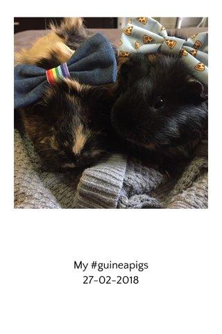 My #guineapigs 27-02-2018