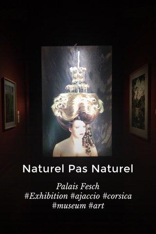 Naturel Pas Naturel Palais Fesch #Exhibition #ajaccio #corsica #museum #art