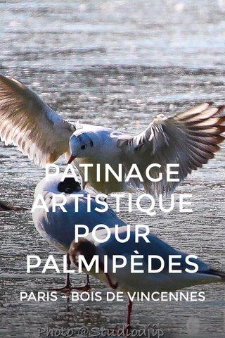 PATINAGE ARTISTIQUE POUR PALMIPÈDES PARIS - BOIS DE VINCENNES