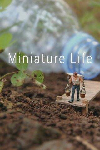 Miniature Life Miniature photography