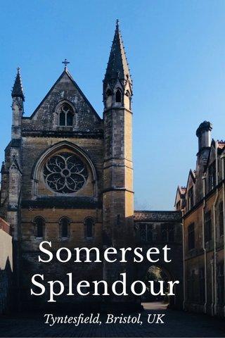 Somerset Splendour Tyntesfield, Bristol, UK