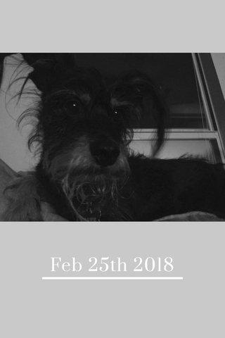 Feb 25th 2018