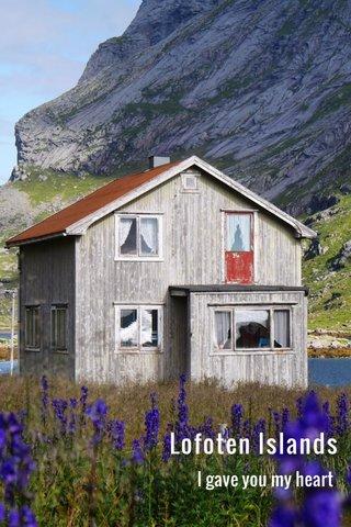Lofoten Islands I gave you my heart