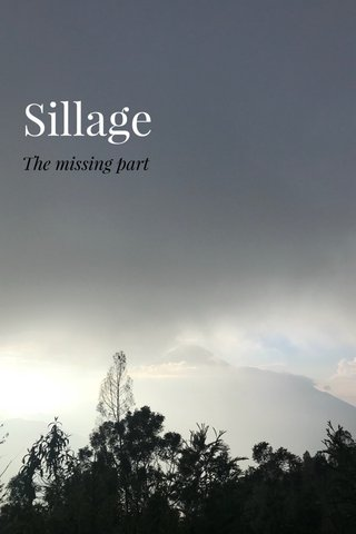 Sillage The missing part