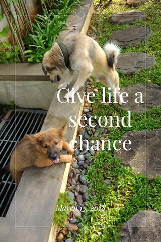Give life a second chance March 15, 2018