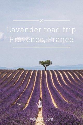 Lavander road trip Provence, France Velotton.com