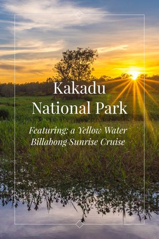 Kakadu National Park Featuring: a Yellow Water Billabong Sunrise Cruise