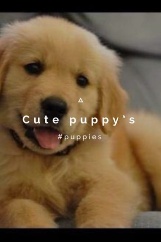 Cute puppy's #puppies