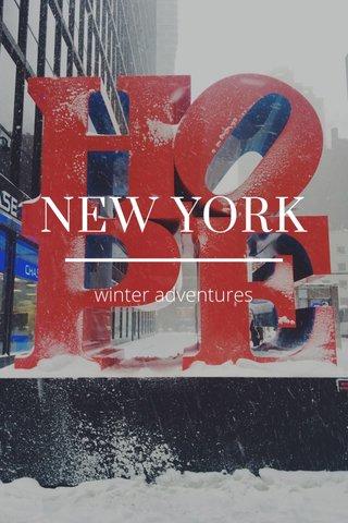 NEW YORK winter adventures