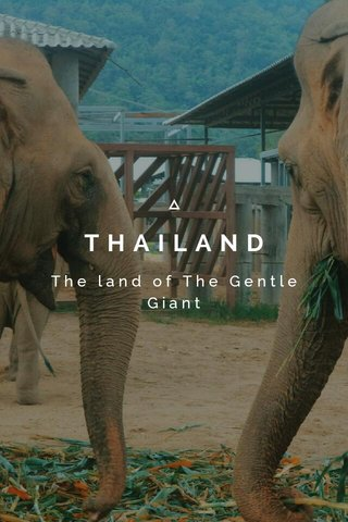 THAILAND The land of The Gentle Giant