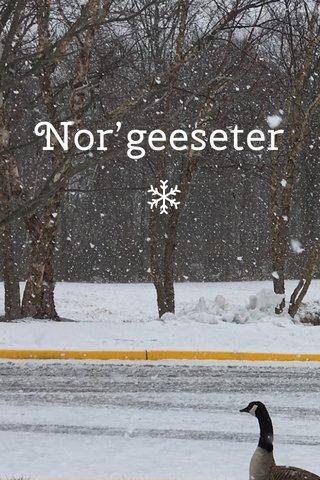 Nor'geeseter