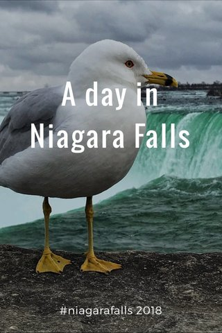 A day in Niagara Falls #niagarafalls 2018