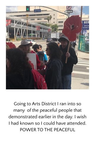 Going to Arts District I ran into so many of the peaceful people that demonstrated earlier in the day. I wish I had known so I could have attended. POWER TO THE PEACEFUL
