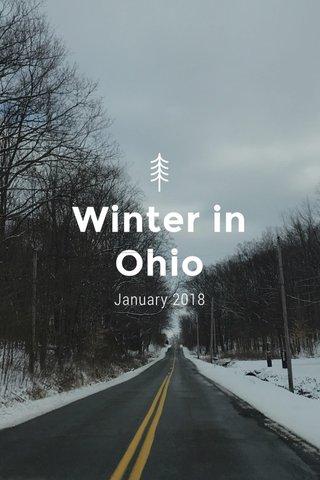 Winter in Ohio January 2018