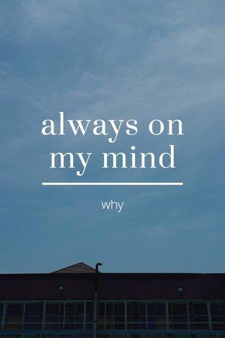 always on my mind why