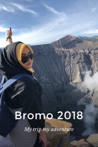 Bromo 2018 My trip my adventure