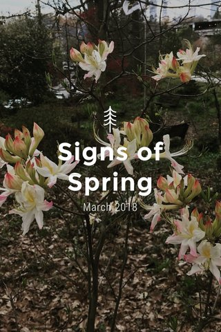 Signs of Spring March 2018
