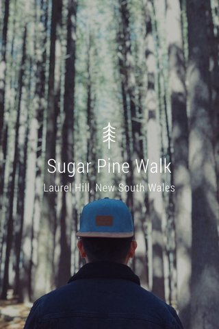 Sugar Pine Walk Laurel Hill, New South Wales