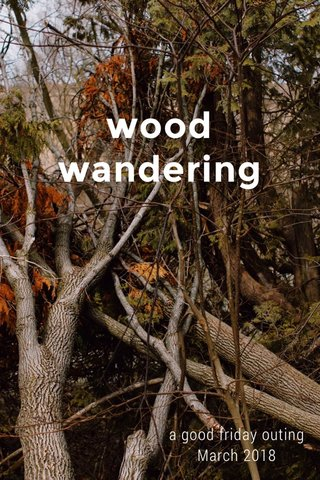 wood wandering a good friday outing March 2018