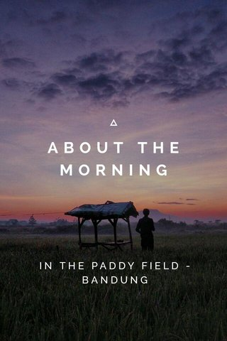 ABOUT THE MORNING IN THE PADDY FIELD - BANDUNG