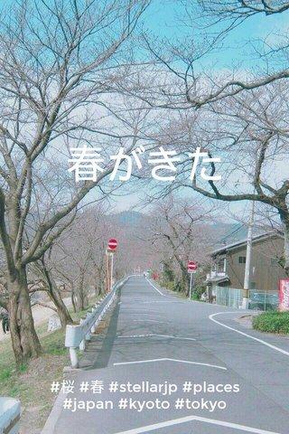 春がきた #桜 #春 #stellarjp #places #japan #kyoto #tokyo