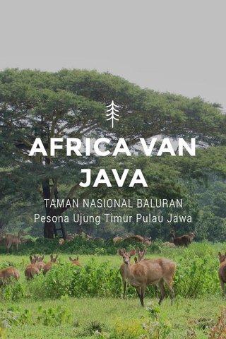 AFRICA VAN JAVA TAMAN NASIONAL BALURAN Pesona Ujung Timur Pulau Jawa