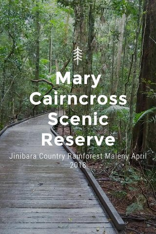 Mary Cairncross Scenic Reserve Jinibara Country Rainforest Maleny April 2018