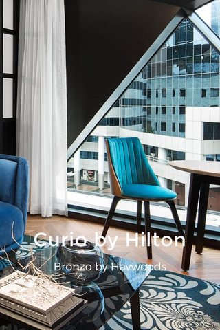 Curio by Hilton Bronzo by Havwoods