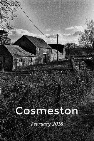 Cosmeston February 2018