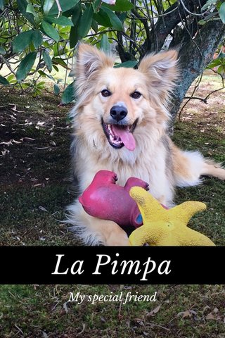 La Pimpa My special friend