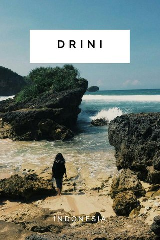 DRINI INDONESIA