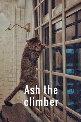 Ash the climber