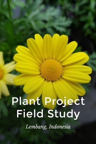 Plant Project Field Study Lembang, Indonesia