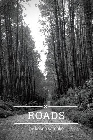 ROADS by krisna satnoko