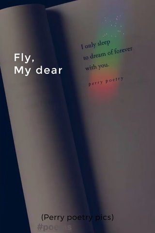 Fly, My dear (Perry poetry pics)