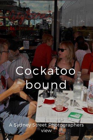Cockatoo bound A Sydney Street Photographers view
