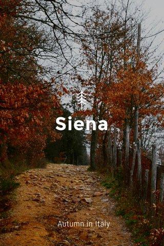 Siena Autumn in Italy