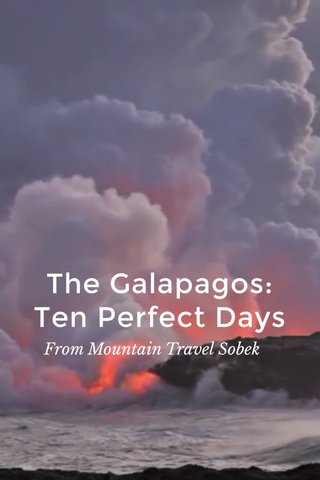The Galapagos: Ten Perfect Days From Mountain Travel Sobek