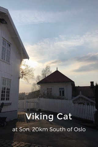 Viking Cat at Son, 20km South of Oslo