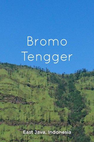 Bromo Tengger East Java, Indonesia