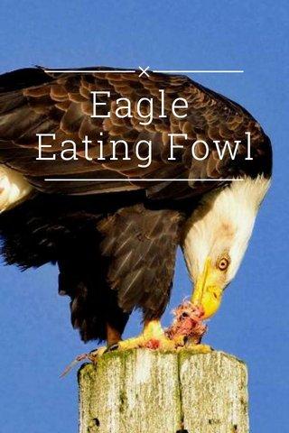Eagle Eating Fowl