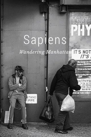 Sapiens Wandering Manhattan