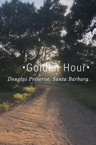 •Golden Hour• Douglas Preserve, Santa Barbara
