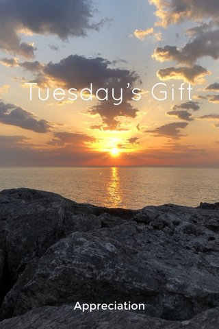Tuesday's Gift Appreciation