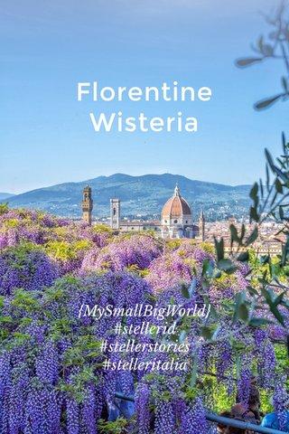 Florentine Wisteria {MySmallBigWorld} #stellerid #stellerstories #stelleritalia