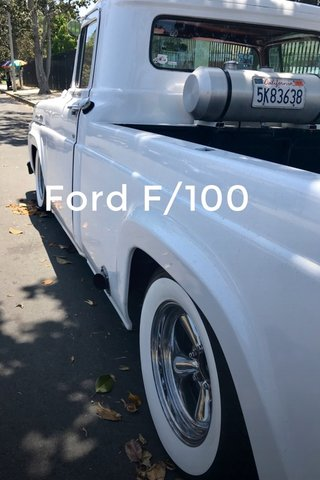 Ford F/100